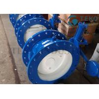 Best Quick Closing Silent Tilted Swing Check Valve Ductile Iron Body With Counterweight Hydraulic Damper wholesale