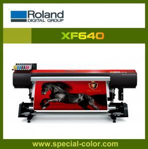China Roland RF/XF/RA/RS640 eco solvent printing machine on sale