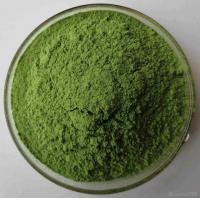 Best 100% Natural Alfalfa Grass Powder Purify Liver , Improving Digestion wholesale