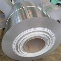 Best 2 Inch Wide Stainless Steel Fixing Strip With Holes Self Adhesive AISI Hot Rolled wholesale