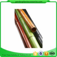 Best Natural Bamboo Garden Stakes /  Bamboo Garden Canes 6ft For Plant Support wholesale