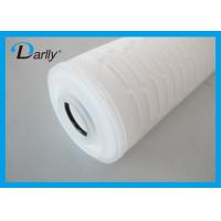China PES Pleated 20 Inch Water Filter Cartridge 0.65µm 1.2µm for Pharmaceutics wholesale
