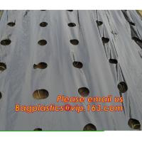 China Perforated plastic mulch film save drilling troubles,perforated agricultural plastic mulch film,perforated white/black m on sale
