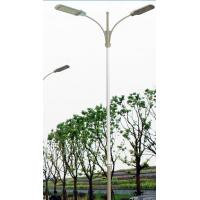China Chot dip galvanized street lighting fixture factory height street light pole complete with fittings and lift system on sale