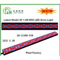 Best High Effective LED Tube Grow Lights Hydroponic For Plant , Long Life Time wholesale