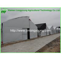 Best saw tooth greenhouse wholesale