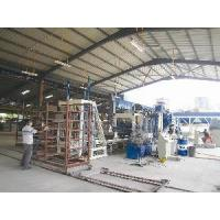 China Automatic Production Line with Racks on sale