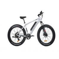 China Comfortable Electric Fat Tire Mountain Bike , Fat Tire Electric Bicycle With Bluetooth on sale