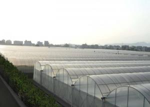 Best Multi Span Hydroponic Tunnel Plastic Cover Greenhouse wholesale