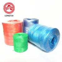 Best Agriculture PP Tomato Tying Rope UV Treated  For  Greenhouse Tomato  Cucumber Chile wholesale