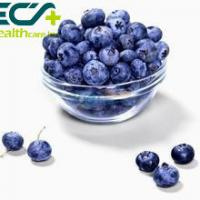 Best Herbal Skin Care Supplements Organic Freeze Dried Blueberry Powder Prevent Cancer wholesale
