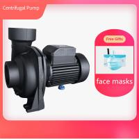 China Gardening Irrigation Centrifugal Water Pump With Free Gifts Face Masks on sale