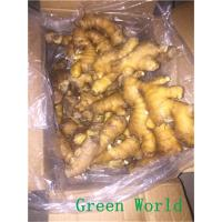 Cheap 2016 New Fresh Chinese Yellow Color Ginger Export to , Karchi Port, Pakistan for sale
