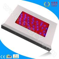 Best 600W LED Grow Light Ratiotailored wholesale