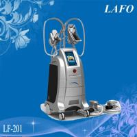 Best LF-202 Professional Freezing Fat Cell Slimming Machine wholesale