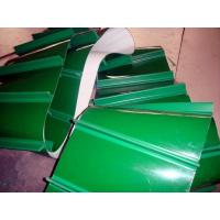 Best pvc conveyor belt/plastic conveyor belt High quality food grade green belt wholesale