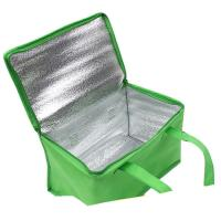 Best Non-woven Material and Food Use commercial cooler bag. size:25cm*20cm*20cm wholesale
