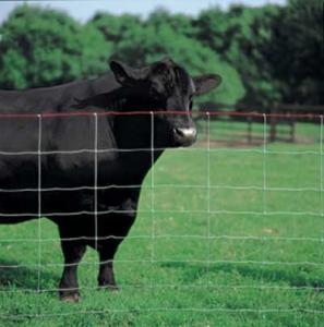Best Ranch Fence wholesale