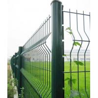 China Euro Style Powder Coated wire mesh fence for backyard on sale