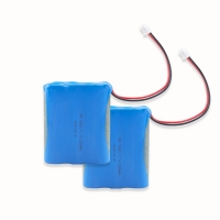 Best 11.1V 2000mAh 18650 Battery Pack For Electronic Digital Product wholesale