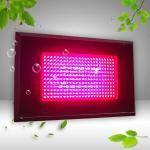 Best 300W LED Grow Light 288*1W wholesale