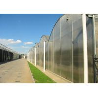 Best Flower Large Polycarbonate Greenhouse Strong Thermal Insulation Sides Ventilation wholesale