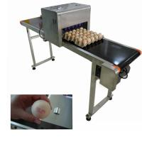 China Electronic Smart Eggs Edible Image Printer For Batch Number / Expiration Date on sale