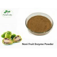 Best Natural Fresh Noni Fruit Enzyme Powder Plant Based For Health Food And Drink Making wholesale