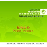 Best Shaanxi Yongyuan Bio-Tech supply Herbal Powder,Achyranthes aspera Powder wholesale