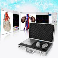 China Clinical Metatron NLS Biofeedback Health Analyzer High Precision With OEM on sale