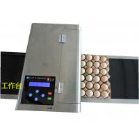 Automatic Egg Batch Coding Inkjet PrinterWith Thermal Foam Type Nozzle