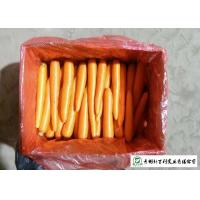 China Quality A Little Finger Carrots S / M / L / 2L Size Supply To Supermarket on sale