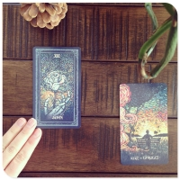 Best 55 ENT71 Sacred Self Care Oracle Tarot Cards For Games wholesale
