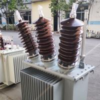 China 22kV Three Phase Oil Immersed Transformer For Power Plant Energy Saving on sale