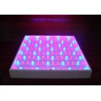 Buy cheap Agricultural hydroponic 270 watt led grow lighting high power IP54 480lm 50 / from wholesalers