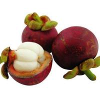 Buy cheap 100% Natural Plant Extract Powder Mangosteen Extract Alpha-Mangostin 10% 20% from wholesalers