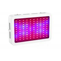 Best LED Indoor Plant Grow Lights IP41 Protection Grade Low Energy Consumption wholesale