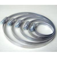 Best Germany Type oil/water tube Stainless Steel Hose Clamp wholesale