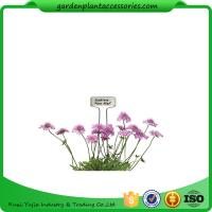 Best Blue Ribbon Garden Plant Markers / Metal Plant Markers For Garden Pcs/Bag 4 Packing size 22*22*14  Pcs/CTN 30 wholesale