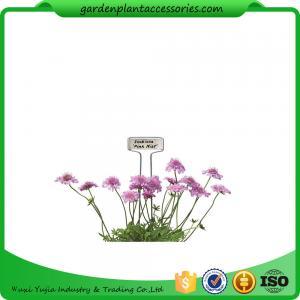 Best Decorative Plant Garden Landscape Markers / Garden Plant Marker wholesale