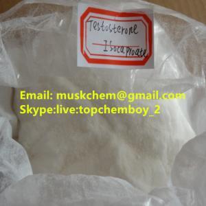 Testosterone Isocaproate Lean Muscle Building Steroids Testosterone Sustanon 250 CAS 2322-77-2