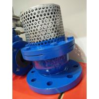Buy cheap PN16 Cast Iron Flanged Foot Valve With Stainless Steel Screen from wholesalers