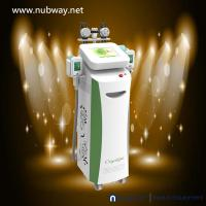 Fat Freezing Machine / multifunctional cryolipolysis Slimming Machine