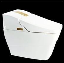 Best Intelligent toilet (LT-56CF) wholesale