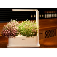 Best 3pcs Plant PP Home Hydroponic Growing Systems With Led Light wholesale