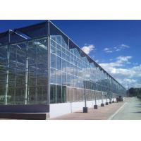 Best Commercial PC Sheet Greenhouse For Vegetables Seeds Vertical Farming wholesale