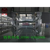 Best Commercial Automatic Egg Collection System / Durable Egg Collector Machine wholesale