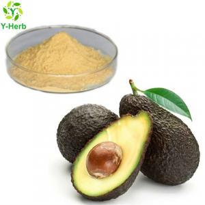 China Factory supply bulk avocado seed extract capsules powder avocado extract on sale