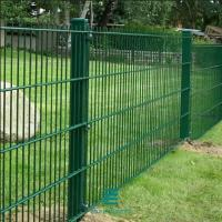 Best Double wire panel fencing  2D PVC Coated Metal Mesh Fence Panels Garden Fencing wholesale