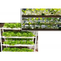 Best Double Side Tube Soilless Cultivation , NFT Hydroponic Pipes For Fruit Vegetables wholesale
